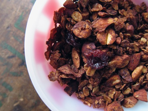 nutty cocoa granola with sour cherries & coconut ribbons | everybody likes sandwiches