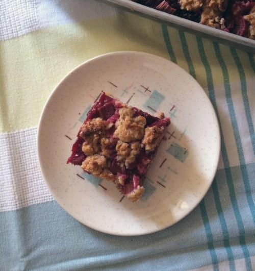 rhubarb-raspberry crumb bars | everybody likes sandwiches