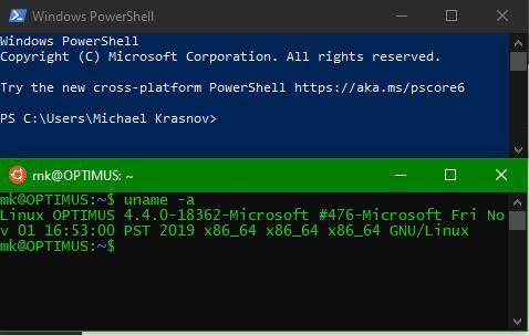 screenshot of powershell and bash running in 2 windows