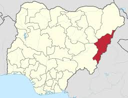 Who owns fighter jet that bombed Adamawa villages?