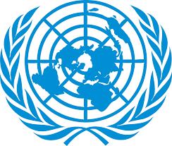 Buhari, Saraki lament as several UN workers are killed in Borno