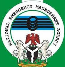 NEMA DG, Maihaja admits violating procurement law, but…