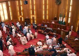 Breaking…armed thugs storm NASS, snatch away Senate mace