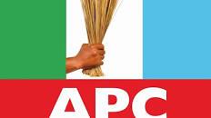 APC suspends Governors Amosun, Okorocha, Minister Usain, and DG Okechukwu; face expulsion