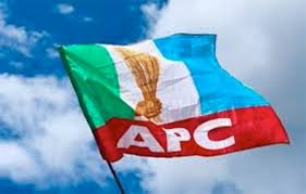 While elsewhere others close ranks to deal with an existential threat, APC, PDP play politics