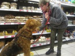 Okay, mum, we shake paws if I get that treat!