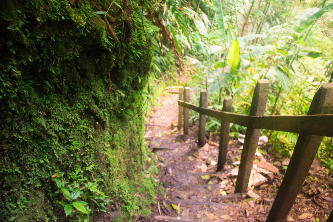 Catarata del Toro, Costa Rica, trail highest waterfall things to do