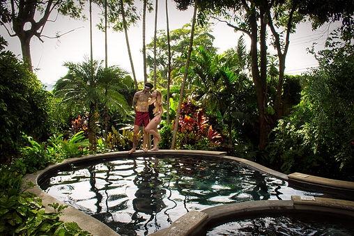 Central America Photography Fauna Luxury Hostel, San Jose, Costa Rica