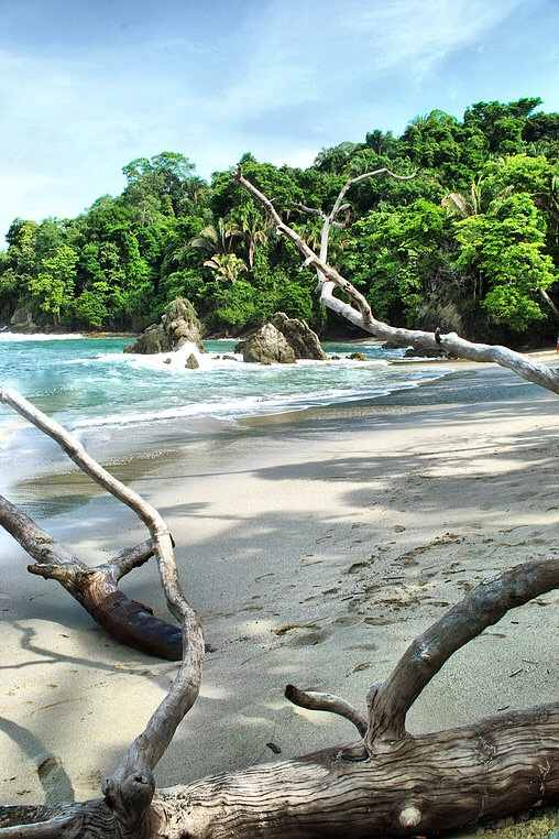 Central America Photography A Complete Guide To Manuel Antonio, Costa Rica