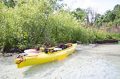 kayak 5 Things To Do At Week Wachee Springs, Florida