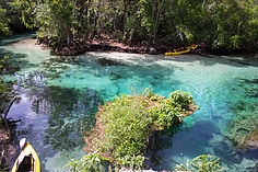 kayak, 5 Things To Do At Week Wachee Springs, Florida