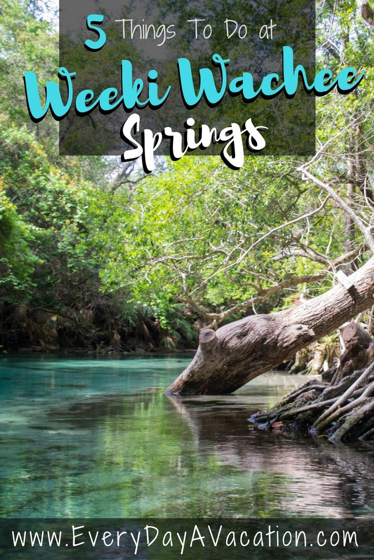 5 Things To Do At Week Wachee Springs, Florida