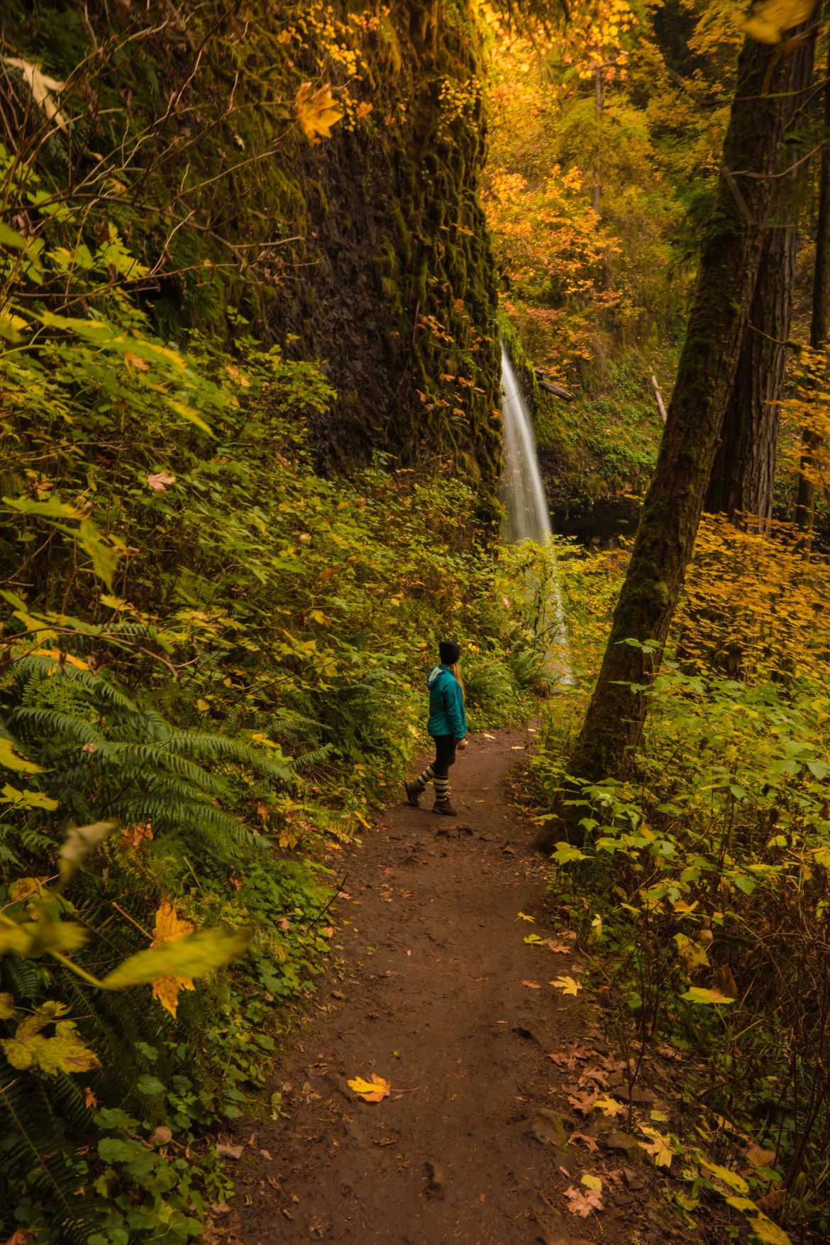 Hiking Oregon's Trail Of Ten Falls