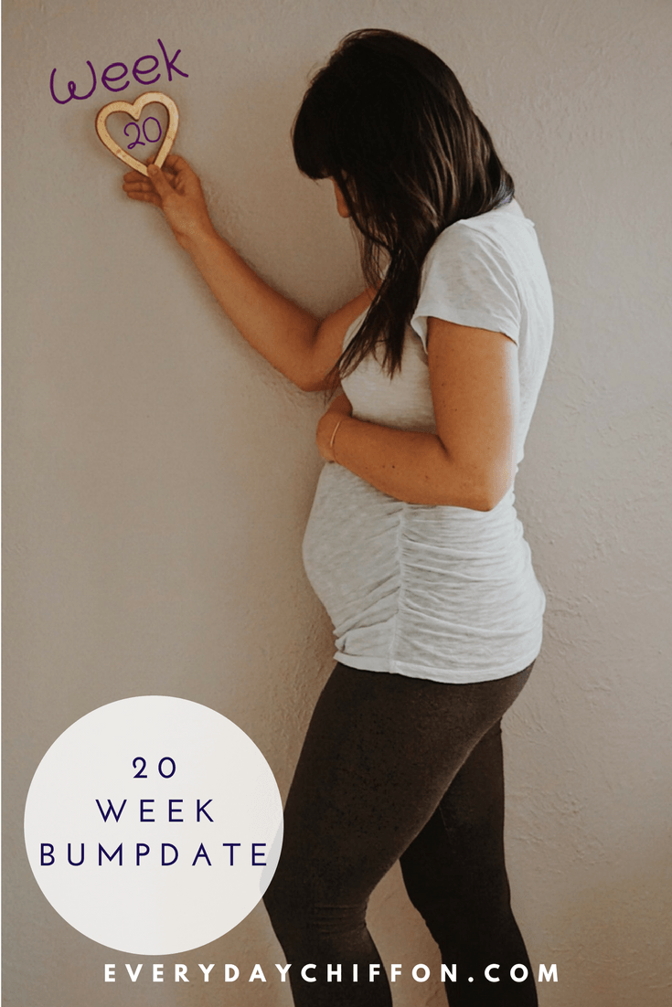 20 Week Bumpdate | Pregnancy Update