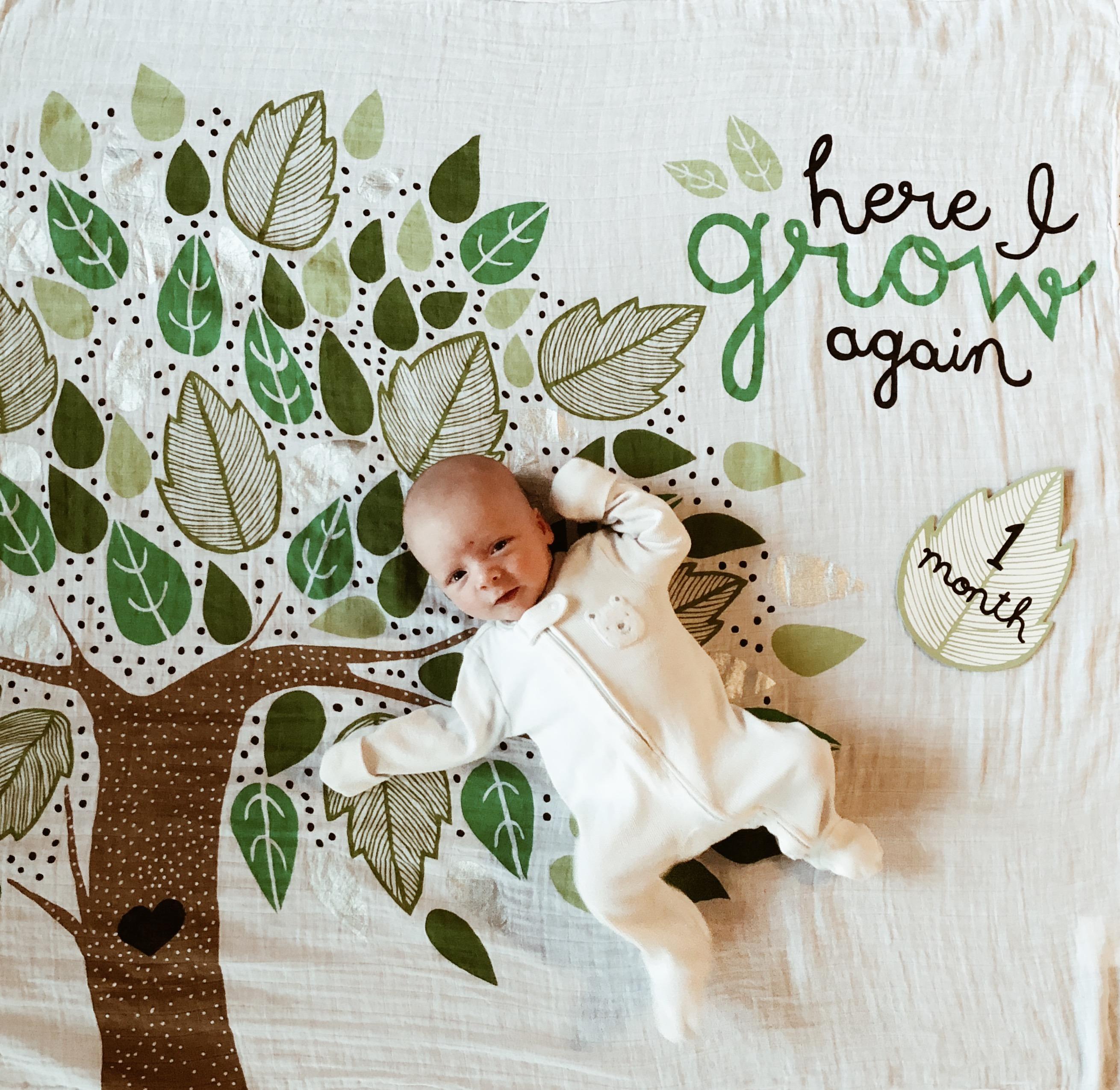 2 Month Update: Addison James | Everyday Mama