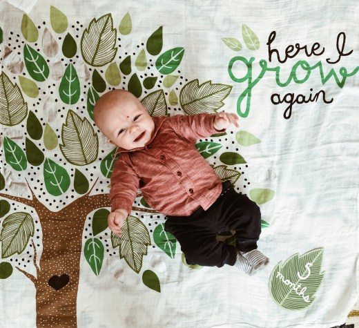 5 Month Update: Addison James   Everyday Mama