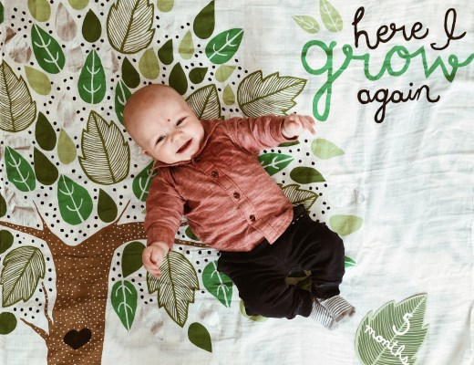 5 Month Update: Addison James | Everyday Mama