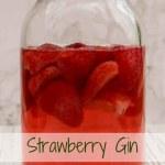 Strawberry Gin maturing in a Kilner jar