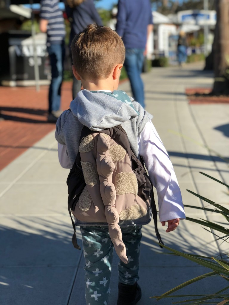 A little boy with a back pack
