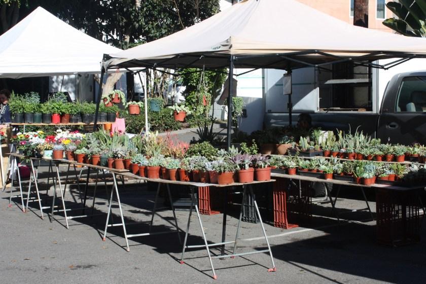 img_2552-farmers-market