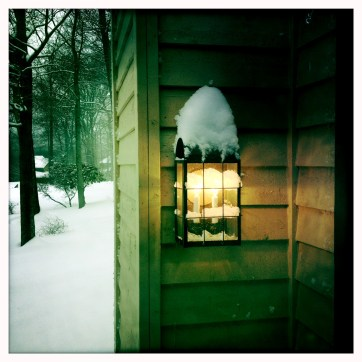 BHF Snow Devin