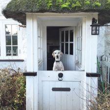 Dutch Doors for the Kitchen Back Door