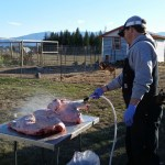 Jason butchering turkeys and rinsing them with water