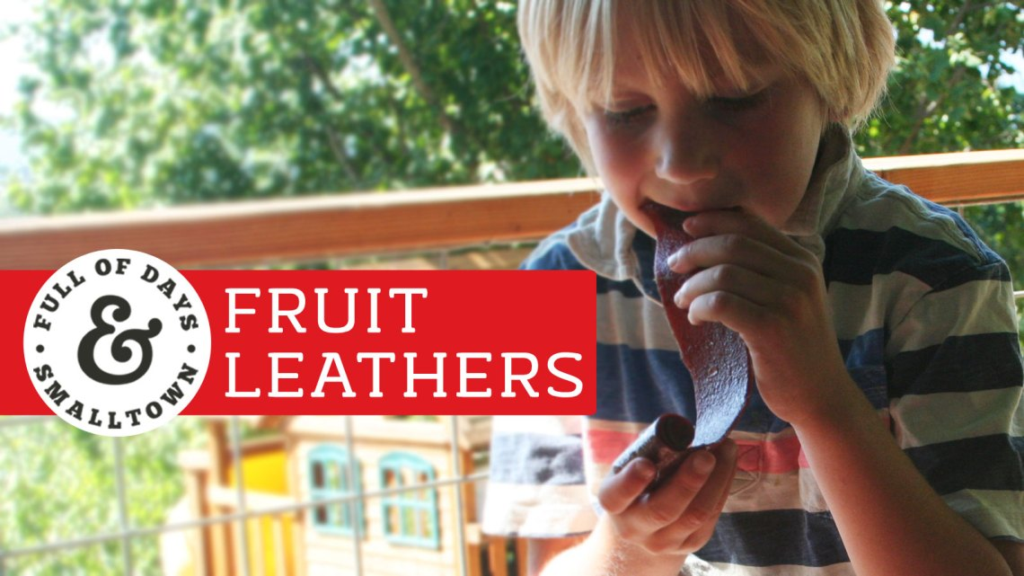 Fruit-Leathers_Full-of-Days_1600-x-900