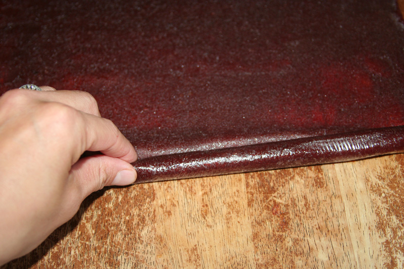 Fruit-Leathers_Full-of-Days_Step-8