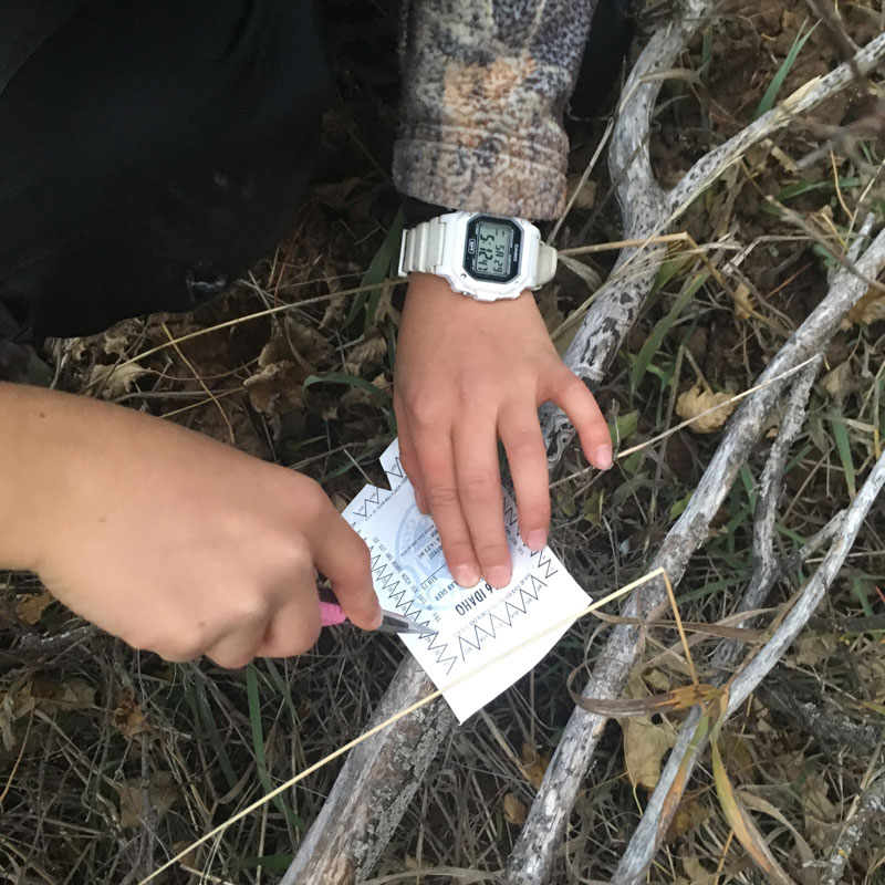 Idaho Resident Tag - White Tale Deer