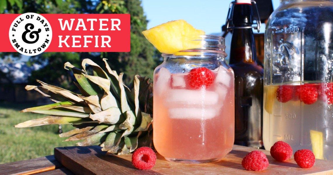 Water Kefir Header Image