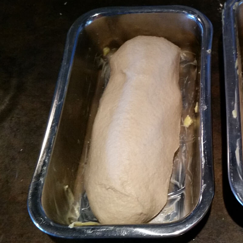 Homemade sourdough bread dough in a buttered loaf pan.