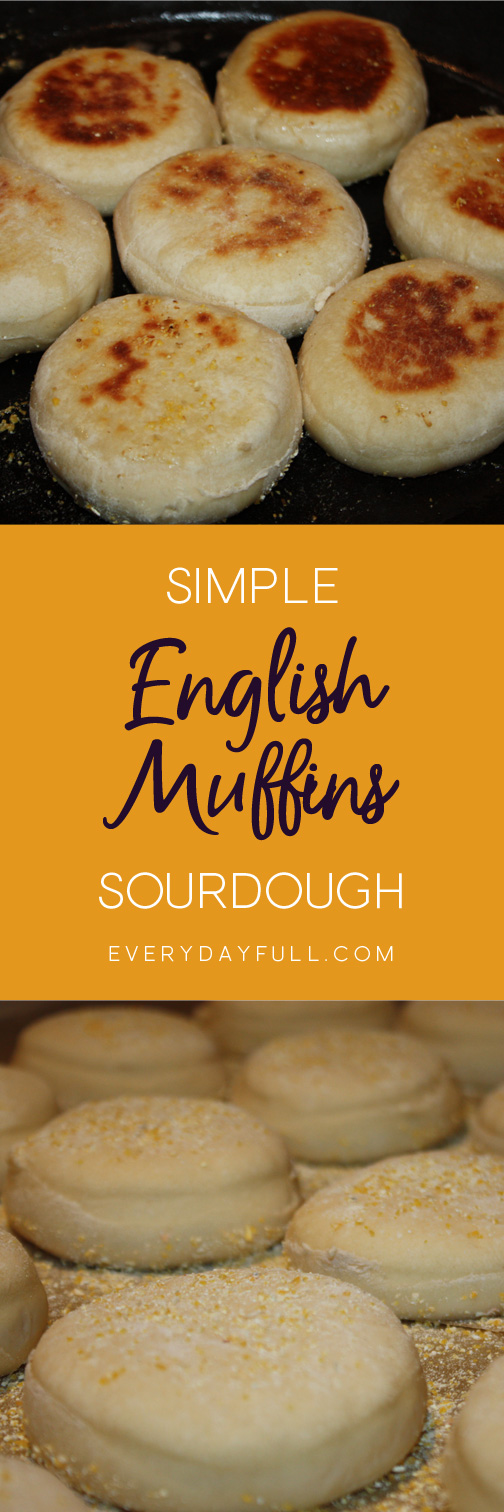 Sourdough English Muffins Pinterest Pin