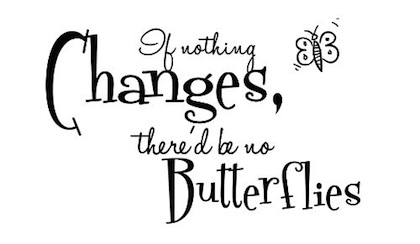 no-butterflies-change-picture-quote