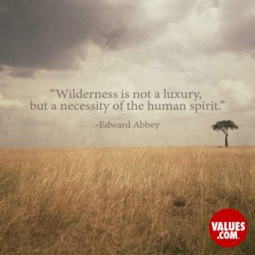 quotes on appreciating nature