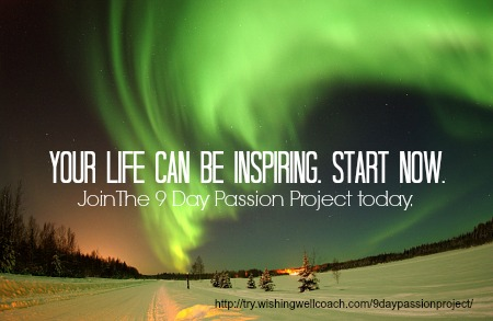 the 9 day passion project