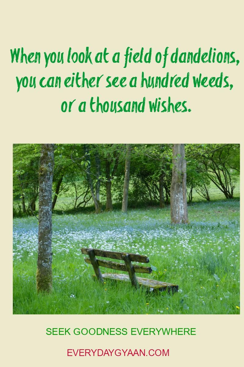 seek-goodness-everywhere