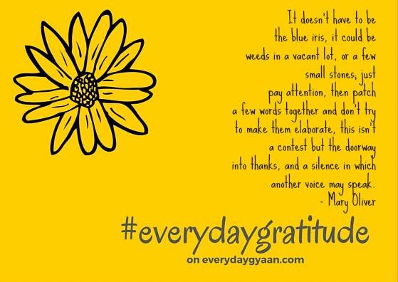 everyday_gratitude