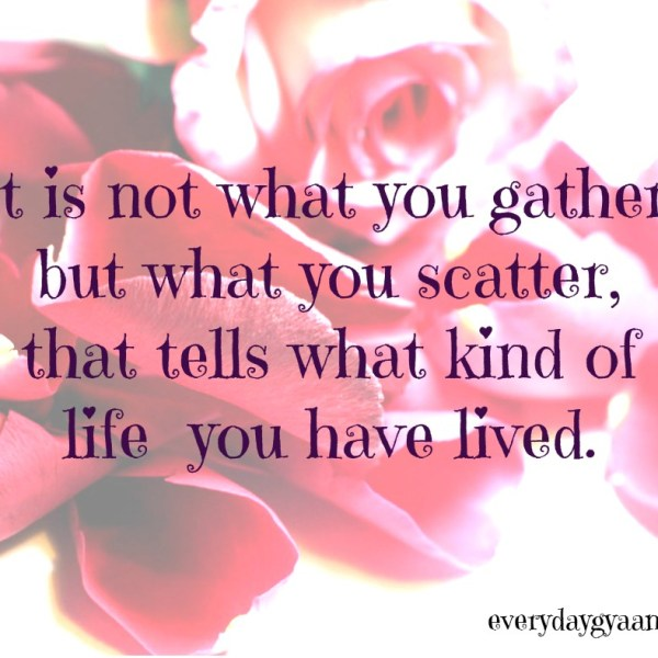 What If We Scatter? #MondayMusings