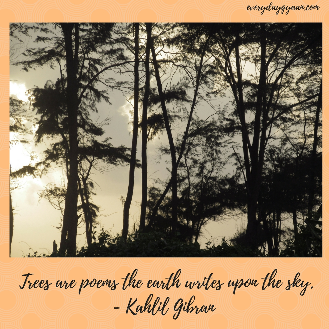 Trees are poems the earth writes upon the sky.- Kahlil Gibran