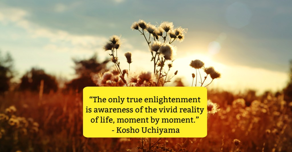 finding magic in everyday moments