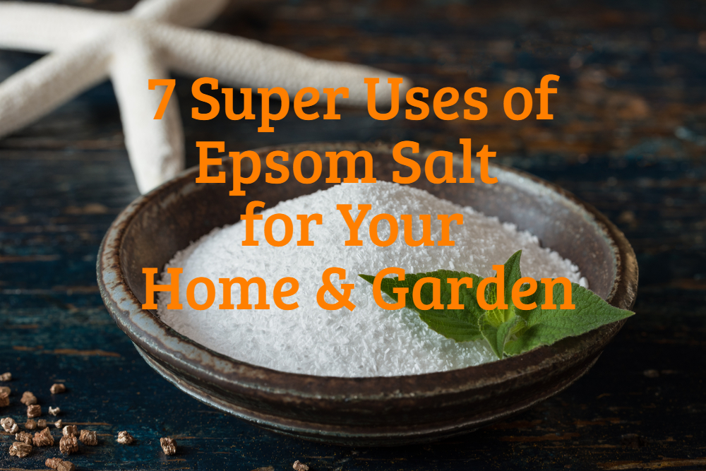 7 Super Uses of Epsom Salt for your Home and Garden