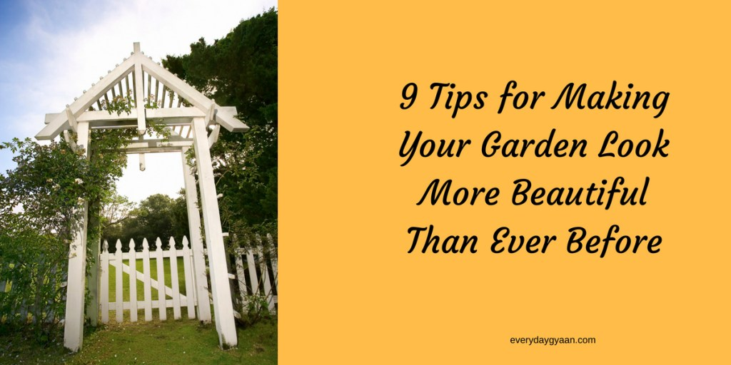 9 Tips for Making Your Garden Look More
