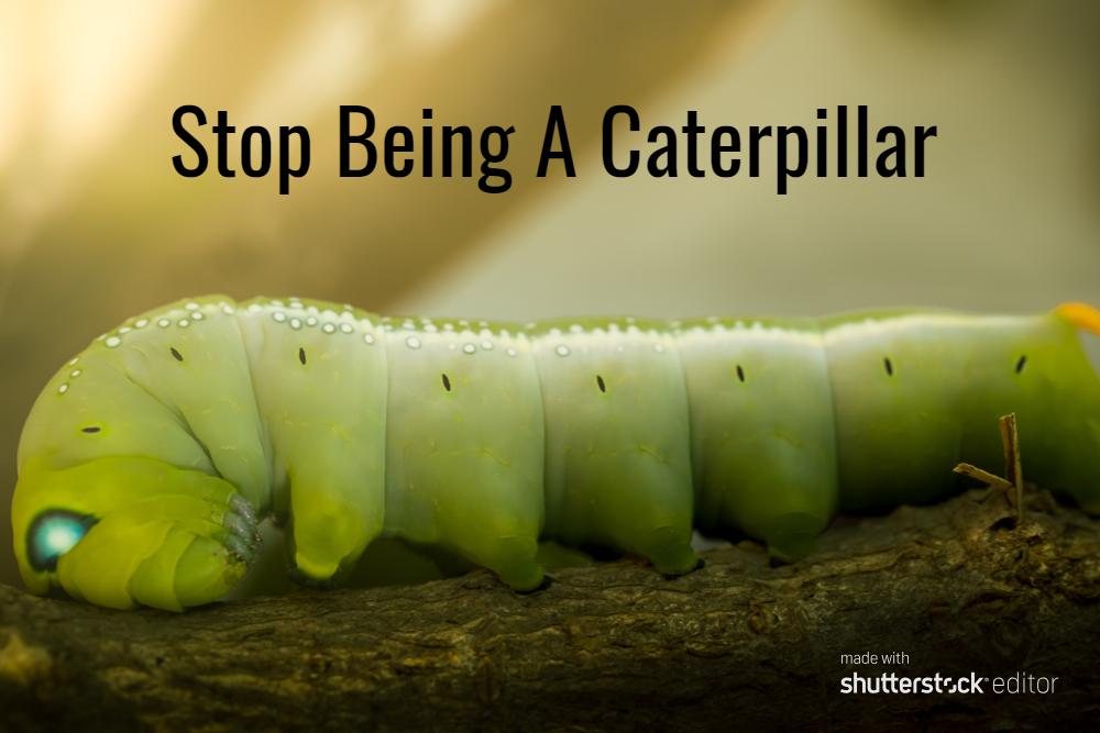 Stop Being a Caterpillar #MondayMusings #MondayBlogs