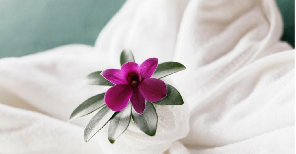 6 luxury spas in india