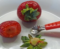 Hulling a Strawberry with a Strawberry Shark (c) jfhaugen