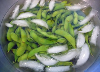 Edamame Cooling Down in Ice Water (c) jfhaugen