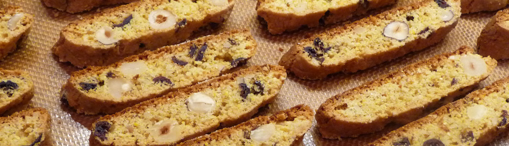 Cranberry Hazelnut Biscotti — Gluten & Dairy Free