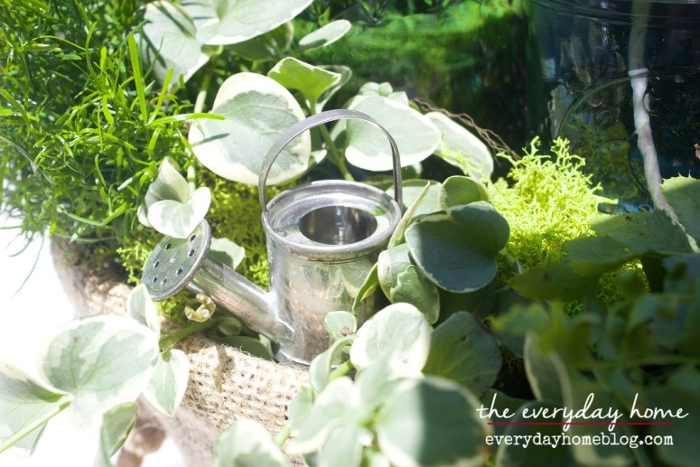 DIY Citronella Mason Jar Candles The Everyday Home Blog www.everydayhomeblog.com (18)