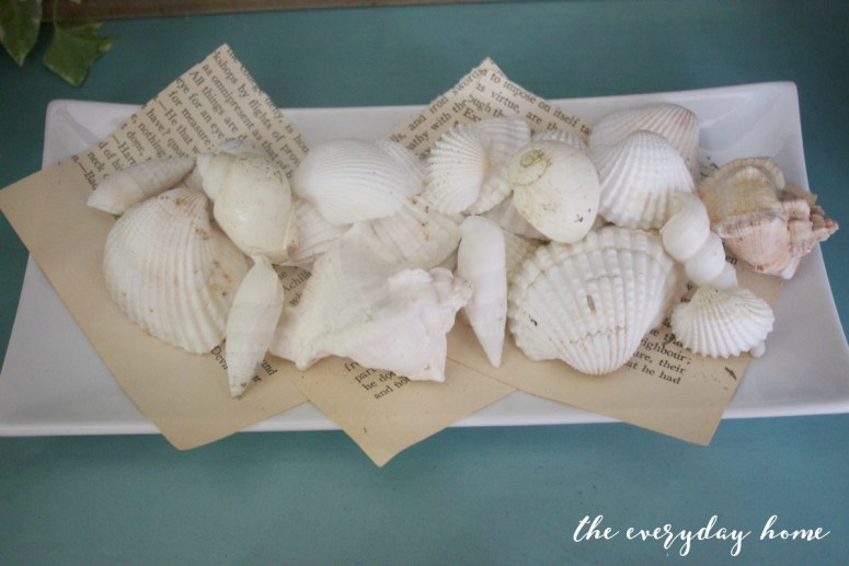Shells on Vintage Book Pages | The Everyday Home